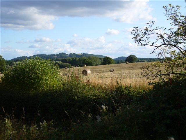 Round Bales and Oyster Hill